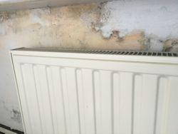 Gevel lekkage veroorzaakt schimmel op de muur van de slaapkamer