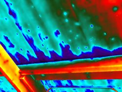 Thermografie bij dak, gevel of leiding lekkage.
